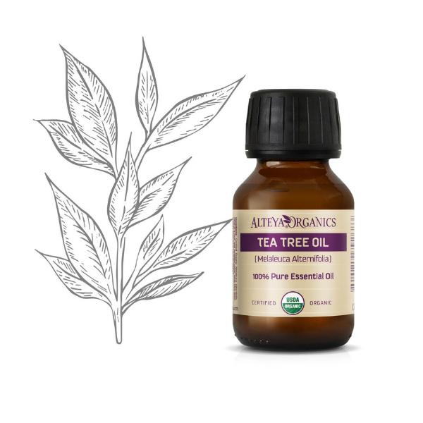 Tea Tree (čajovníkový) olej 100% Bio Alteya 50 ml