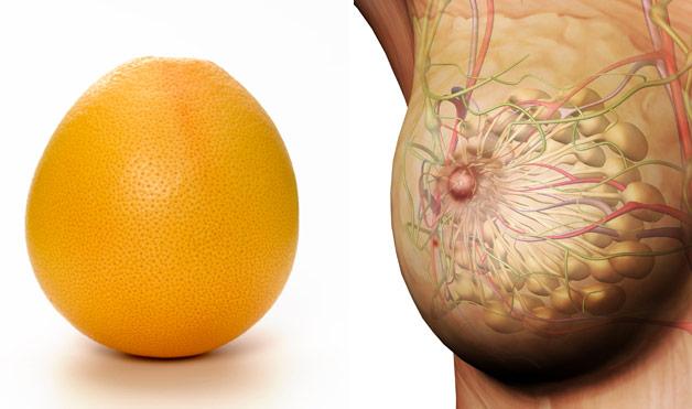 Citrusy a prsia