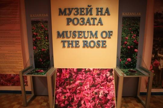 ruzove muzeum
